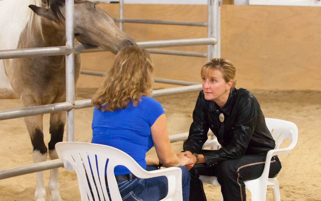 What does an Equine Gestalt Coaching session look like?